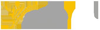 Stichting ATEX Logo